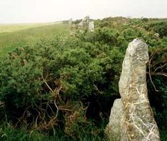 The Nine Maidens stone row, St Columb Major consists of nine unequally spaced stones which may have once extended to the now destroyed Magi Stone – a standing stone or menhir which once lay on the ridge to the north. Photo © Cornwall County Council Historic Environment Service