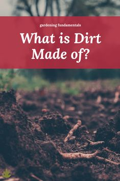 """All gardeners wonder """"What is dirt made of?…"""" at some point. Dirt is one of those things we take for granted until we stop and think about it. Where does dirt come from? What chemical elements is it made from? Is it dead or alive? So many questions! Organic Gardening Tips, Urban Gardening, Vegetable Gardening, Side Garden, Colorful Plants, Different Plants, Foliage Plants, Garden Soil, Potting Soil"""