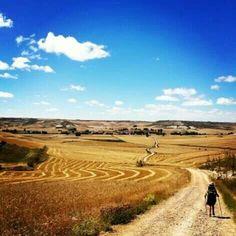 Camino de Santiago. Can't wait to walk this in June!
