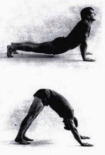 Yoga Fitness, Health Fitness, Tibet, Yoga Poses, Healthy Life, Health Tips, Workout, Sports, Animals