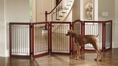 When you need to contain your dog, you should avoid buying some cheap plastic stuff and go for the best dog gates you can find online for a reasonable price