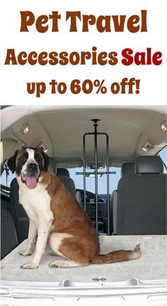 Pet Travel Accessories Sale: up to 60% off! #dog #pets #thefrugalgirls