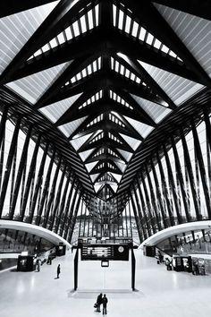 LYON - Estación de trenes en el aeropuerto, por Santiago Calatrava