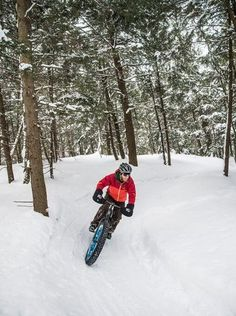Michigan - Ride the snow on a fat tire bike on one