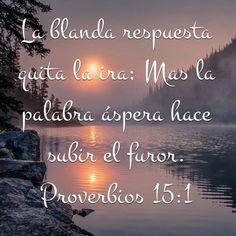 Proverbios 15:1 La blanda respuesta quita la ira; Mas la palabra áspera hace subir el furor.♔