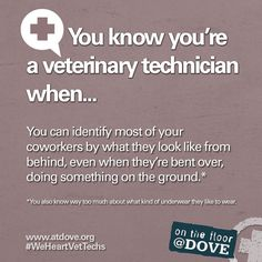 You know you're a Veterinary Technician when...