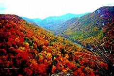 Image result for Scenery of North Carolina