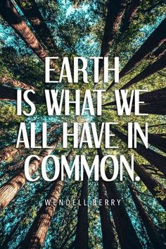 nature quotes 40 Best Environmental Quotes To Inspire You To Help Save Our Planet Save Planet Earth, Save Our Earth, Save The Planet, Environment Quotes, Green Environment, Mother Nature Quotes, Save Nature Quotes, Save Mother Earth, Wisdom Quotes