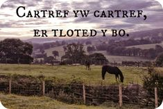 """Welsh: """"Cartref yw cartref, er tloted y bo.""""Approximate pronunciation: car-trev yew car-trev, air tloh-ted uh bohTranslation: """"Home is home, no matter how poor it may be. Welsh Sayings, Welsh Words, Word Up, Word Of The Day, Wales Language, Learn Welsh, Celtic Nations, Knowledge And Wisdom, Cymru"""