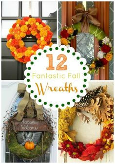 Wreaths are a warm and welcoming way to greet your family and friends. This fall follow these 12 fantastic ideas for creating your own lovely wreath! Learn more... after the break! nggallery id='126569' Have you made a Fall wreath you love? Here's the one I made for Fall: Fall Houndstooth Pumpkin Wreath Share YOUR wreath…