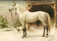 otto eerelman   Otto Eerelman (1839-1926) » Stamboom Helmantel » Genealogie Online