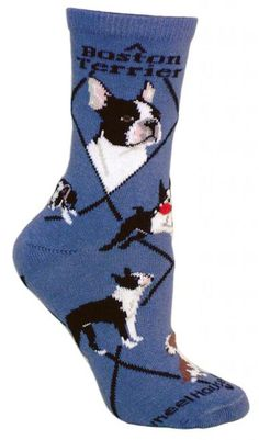 Boston Terrier Dog Blue Cotton Ladies Socks