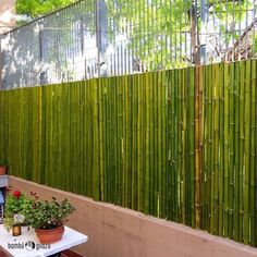 Ideias De Cercas De Bambu Ideas for bamboo fences 8 Bamboo Hedge, Side Yard Landscaping, Bamboo House Design, Modern Fence Design, Privacy Fence Designs, Garden Privacy, Bamboo Architecture, Bamboo Crafts, Bamboo Furniture