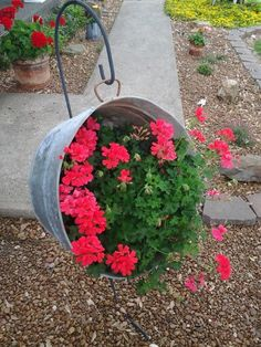 Washtub with my favorite flowers 2014