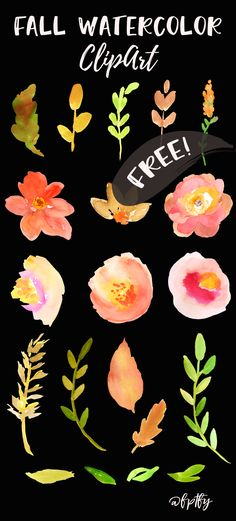 Free Fall Watercolor Floral Clip Art- So Pretty! - Free Pretty Things For You