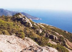 Parks Victoria is adopting a new approach to conservation planning for managing the state's national parks, starting with Wilsons Promontory National Park.