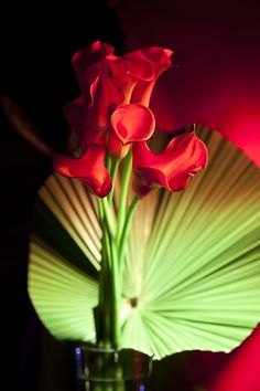 Deep red calla lilly and palm leaf flower arrangement