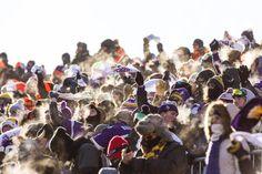 Fan Photos: Vikings-Seahawks - -6 degrees