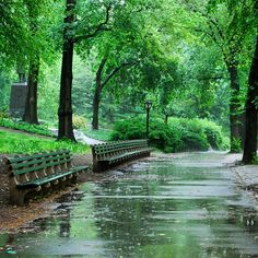 Even On A Rainy Day #CentralPark Sparkles On This 4th Of July.