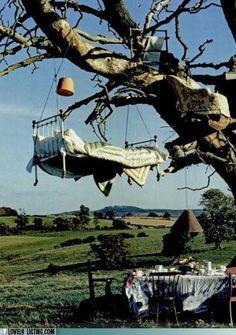 picknick  in een boom