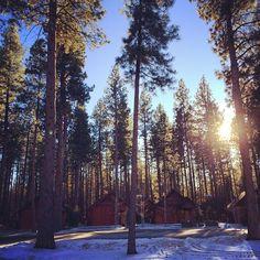 Cute cabins #cabin #oregon #trees #snow #winter #sunshine #Padgram