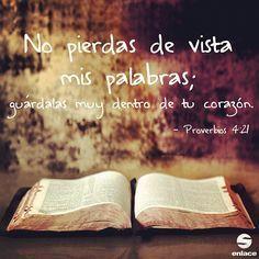 No pierdas de vista la palabra de Dios...