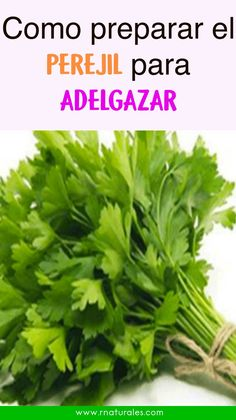 With this recipe you will lose weight in a surprising way - Bebidas Para Adelgazar Best Healthy Diet, Healthy Juices, Diet And Nutrition, Health Diet, Magnesium Drink, Healthy Breakfast On The Go, Low Sodium Diet, Weight Loss Juice, Thanksgiving Desserts Easy