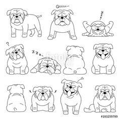 ベクター: bulldog elements line drawing 点