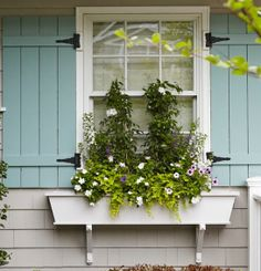 Dressing up any old window.