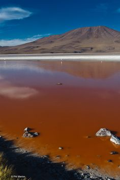 Volcano and red water of Laguna Colorado - Bolivian altiplano