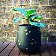 19 Best Handpainted Lightweight Indoor Plant Pot Khaki Black Gold