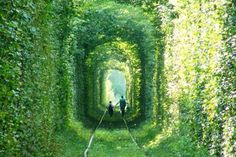 Leafy Tunnel Of Love in Ukraine - This gorgeous long, leafy tunnel looks like a green dream or a scene from a film - but it can actually be found deep in the forests of Ukraine. Located near the town of Kleven, this luscious green tunnel provides passage for a private train that provides wood to a local factory. Measuring 1.8 miles long, the unusual rail route in Eastern Europe is also a popular spot for lovers' promises.