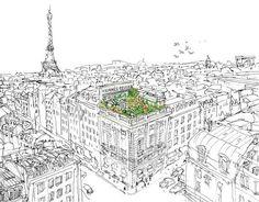 #parisian illustration...