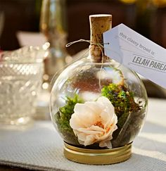 Probably my favourite one on the list -- 21 clever little ideas for terrariums from Brit + Co.