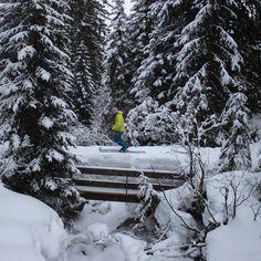 Telemarken in den Alpen.  Adele Bergzauber macht eine Skitour vor der Haustür.   Adele Bergzauber ist ein Outdoorlabel aus dem Allgäu.   #adelebergzauber #merino #merinopullover #berge #mountainbike #mtb #klettern #bouldern #draussen #outdoorbekleidung #allgäu #kempten Adele, Merino Pullover, Mtb, Bouldering, Climbing, Mountains, Alps
