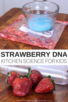 Smashed strawberries and DNA! Learn how to extract strawberry DNA science with kids for cool food science. Extracting and observing strawberry DNA is easy! Food Science Experiments, Science Activities For Kids, Easy Science, Preschool Science, Stem Activities, Summer Science, Science Chemistry, Elementary Science, Science Classroom