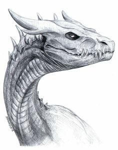 Art Drawings Sketches, Animal Drawings, Cool Drawings, Magical Creatures, Fantasy Creatures, Dragon Sketch, Dragon Artwork, Dragon Design, Creature Concept