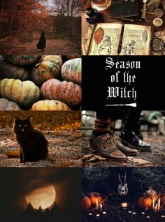 """Witch Aesthetics // Autumn Witch """"Requested """" Cake Witch 
