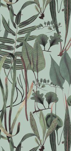 Woodland, Subtle and elegant yet bold print design in bottle green vegetation against a number of suitable base colors in large repeat size, perfectly suitable Pattern Design, Print Design, Bold Prints, Beautiful Patterns, Surface Design, Woodland, Print Patterns, Plant Leaves, Wallpaper