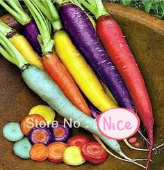 Wholesale!! 200 pcs/ 7 colors rainbow carrot seeds Vegetable seeds carrot crazy varieties fruit seeds lose weight health care #Affiliate