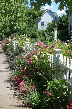SHABBY GIRL cottage | cottage gardens and soft edges