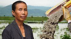 Java, Indonesia: van a convertir las montañas en cemento http://laoropendolasostenible.blogspot.com/2017/04/java-indonesia-van-convertir-las.html