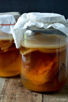 Learn How to Grow a Kombucha Scoby in this post. You need a scoby to ferment the tea to brew kombucha, a beverage filled with probiotics.