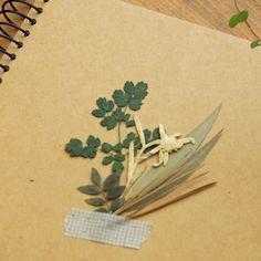 Dried Deco Flower v2