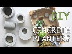 Easy and Affordable DIY Concrete Planters Concrete Garden Edging, Diy Concrete Planters, Concrete Bowl, Concrete Molds, Concrete Art, Concrete Projects, Diy Planters, Garden Crafts, Garden Projects