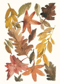 All the leaves are Brown 16X11 Archival Print of Original  water color painting Indian summer limited edition.