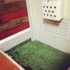 100均で売っているガーデニング用人工芝を使って、お部屋にお手入れ不要のグリーンを取り入れませんか?人工芝をカットして貼りつけるだけで、あなたのお部屋の一画が癒し空間に♡玄関・壁・スイッチカバー・ラグマットなど人工芝を使ったDIYに挑戦してみましょう!100均で手に入るお洒落グリーンインテリアをご紹介します。