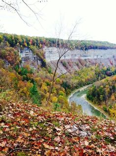Letchworth State Park Ny Parks, State Parks, Letchworth State Park, Rochester New York, Upstate New York, Auburn, The Good Place, Buffalo, Places To Visit