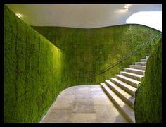 #Deck #Exterior #Muro #Verde #Jardin