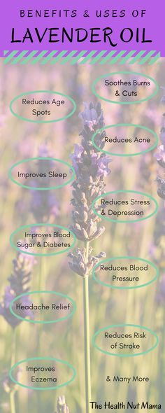 Find out 20 of the amazing Benefits & Uses of Lavender Oil. Natural Remedies for Anti-aging, soothing burns, improving sleep, healing eczema, shingles plus many many more. Insomnia Remedies, Natural Headache Remedies, Herbal Remedies, Anti Aging Tips, Anti Aging Skin Care, Lavender Oil Uses, Natural Sleeping Pills, Anti Aging Supplements, Headache Relief